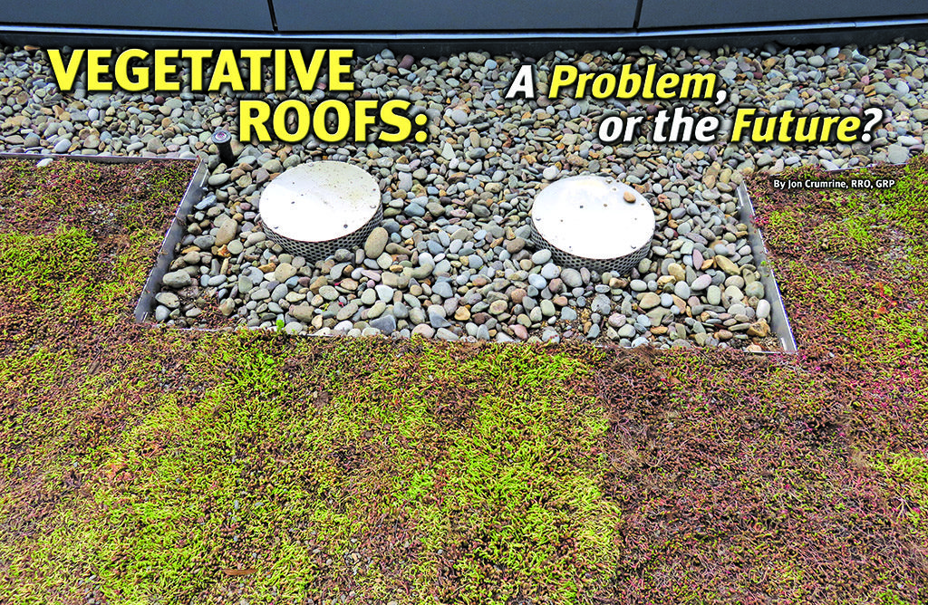vegetative roof with drain