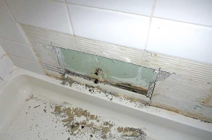 missing tiles and mildewed wallboard