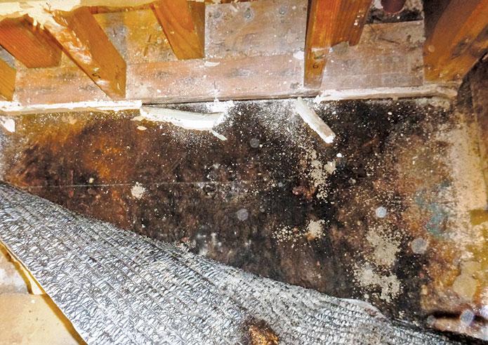 damaged subfloor