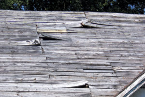 warping wood roof