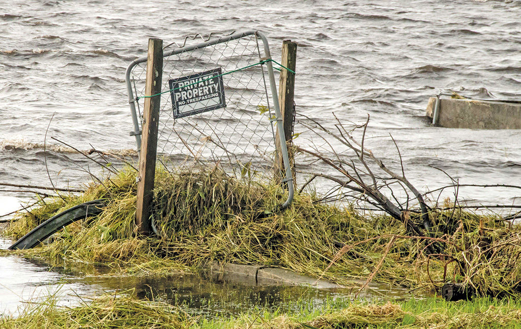 flooded fence