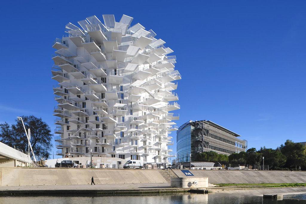 The L'arbre Blanc